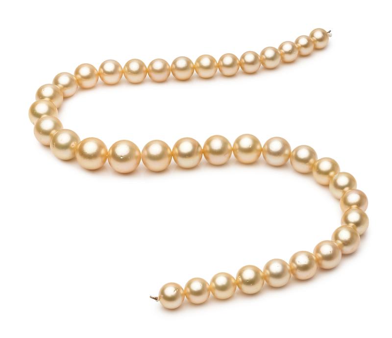 Halskette mit goldfarbenen, 9.7-13.9mm großen Südseeperlen in AA-Qualität , 18-Zoll