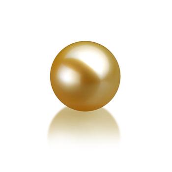 Einzelstück mit goldfarbenen, 10-11mm großen Südseeperlen in AAA-Qualität
