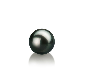 Einzelstück mit schwarzen, 7-8mm großen Janischen Akoya Perlen in AAA-Qualität