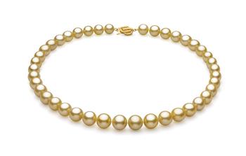Halskette mit goldfarbenen, 9.04-11.83mm großen Südseeperlen in AAA-Qualität