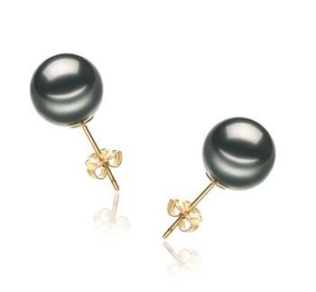 Paar Ohrringe mit schwarzen, 9-10mm großen Tihitianischen Perlen in AA-Qualität