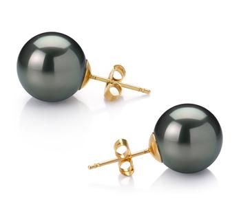 Paar Ohrringe mit schwarzen, 12-13mm großen Tihitianischen Perlen in AAA-Qualität