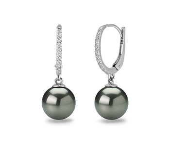 Paar Ohrringe mit schwarzen, 10-11mm großen Tihitianischen Perlen in AAA-Qualität