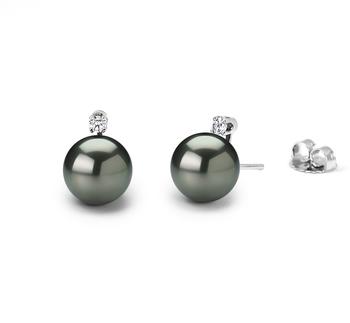 Paar Ohrringe mit schwarzen, 9-10mm großen Tihitianischen Perlen in AAA-Qualität