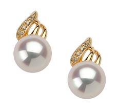 PearlsOnly - Paar Ohrringe mit weißen, 8-9mm großen Janischen Akoya Perlen in , Anastasia