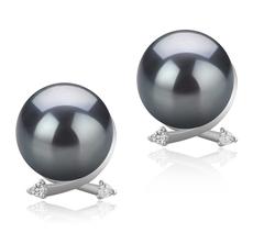 Paar Ohrringe mit schwarzen, 10-11mm großen Tihitianischen Perlen in AAA-Qualität , Berry