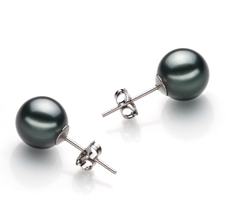 PearlsOnly - Paar Ohrringe mit schwarzen, 9-10mm großen Tihitianischen Perlen in AAA-Qualität , Ilea