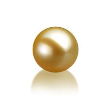 10-11mm AAA-Qualität Südsee Einzelne Perlen in Gold