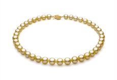9-11.7mm AAA-Qualität Südsee Perlenhalskette in Gold