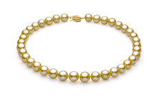 PearlsOnly - Halskette mit goldfarbenen, 10.89-12.75mm großen Südseeperlen in AAA-Qualität