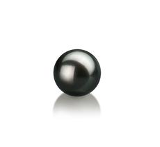 7-8mm AA-Qualität Japanische Akoya Einzelne Perlen in Silvia Schwarz