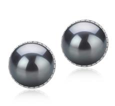 Paar Ohrringe mit schwarzen, 10-11mm großen Tihitianischen Perlen in AAA-Qualität , Tammy