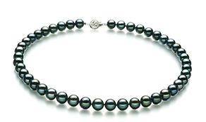 Black japanese Akoya Pearls